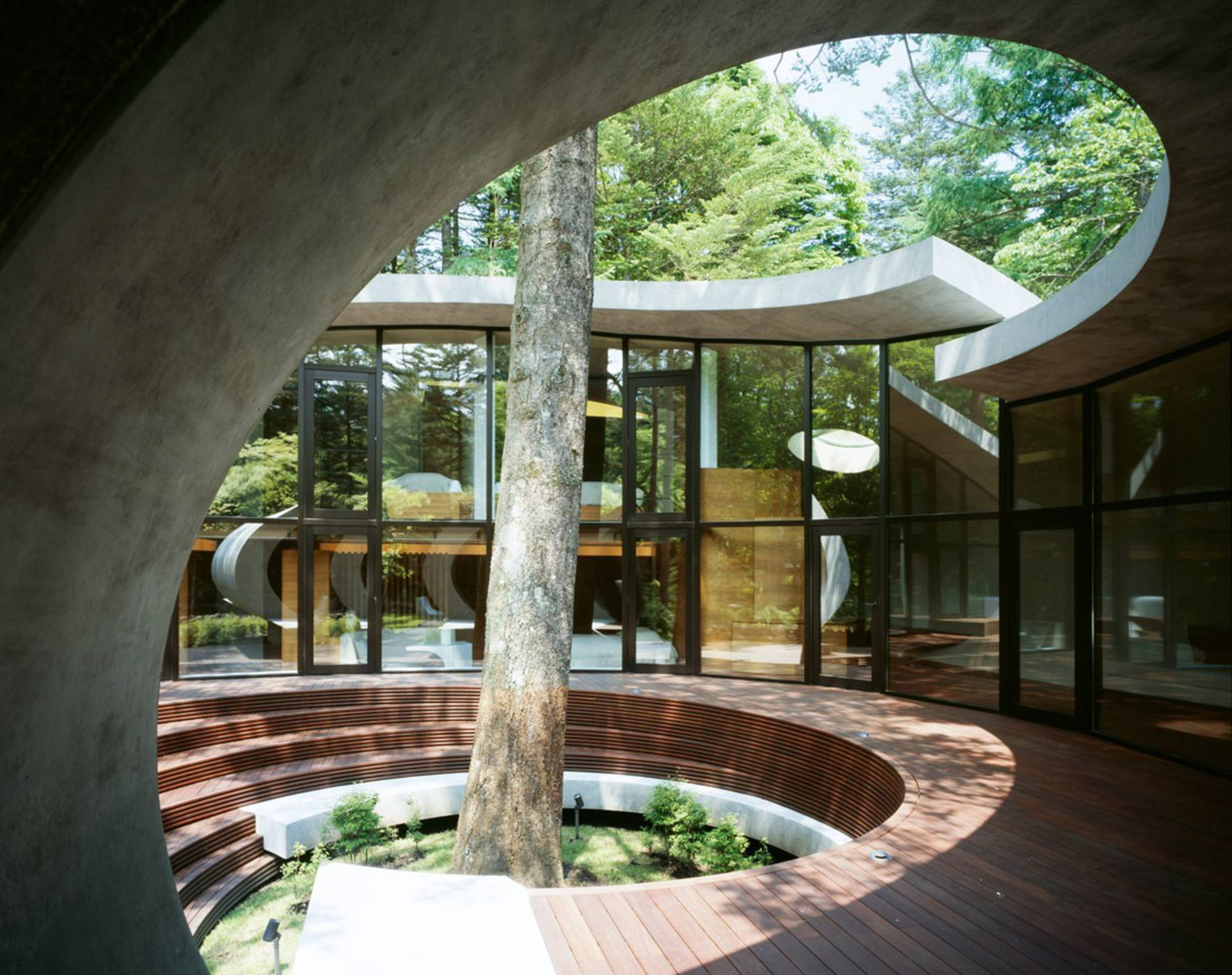 Nice Shell House Part - 14: ... The Shell House In The Forest By ARTechnic Architects ...