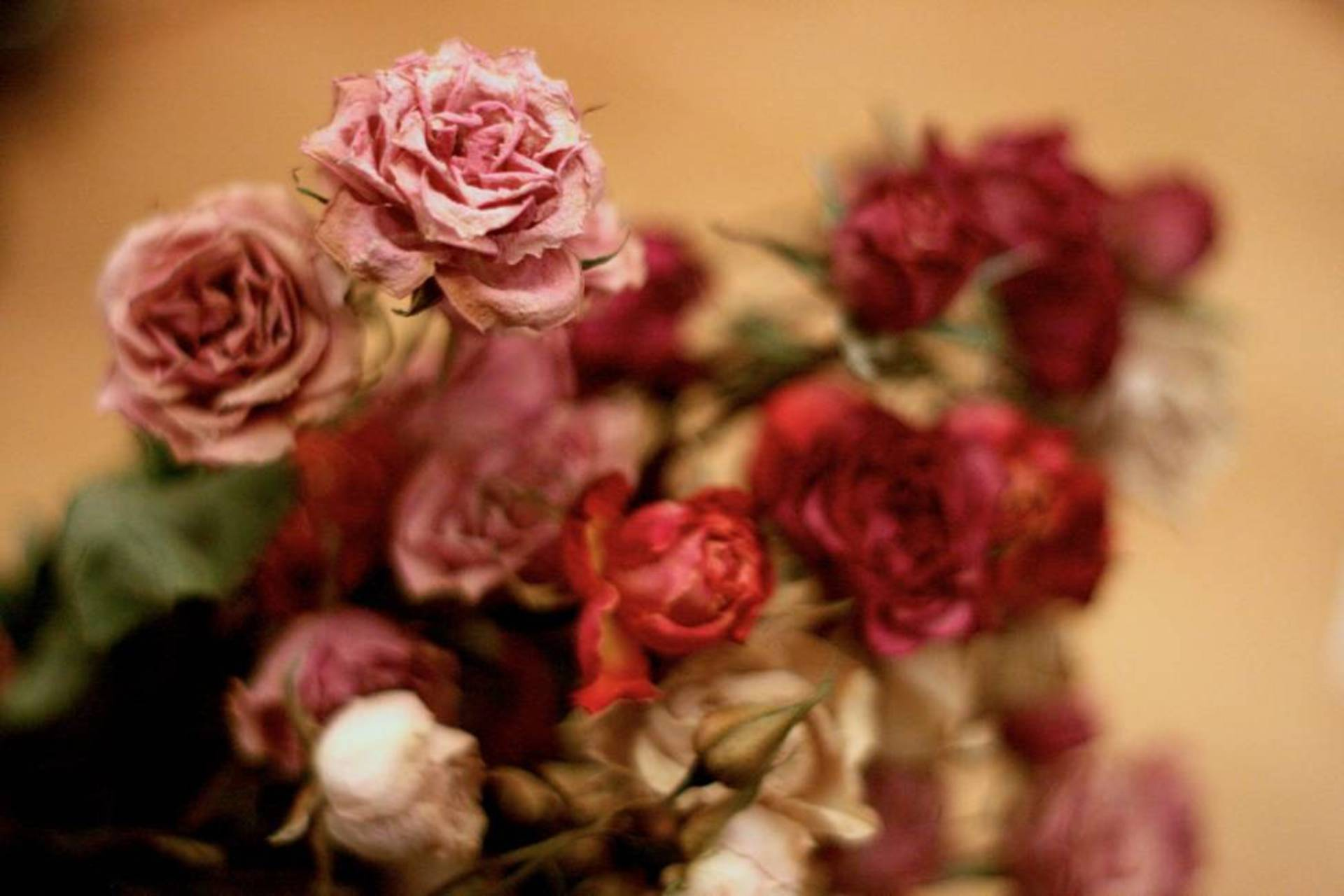How to decorate home with flowers -  Decorate Your House With Dried Flowers