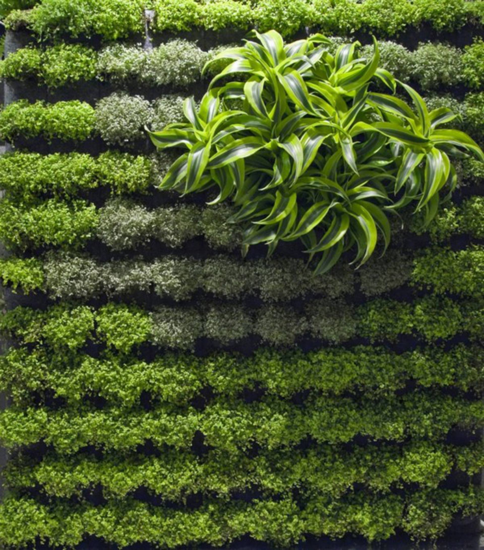 how to make your house green