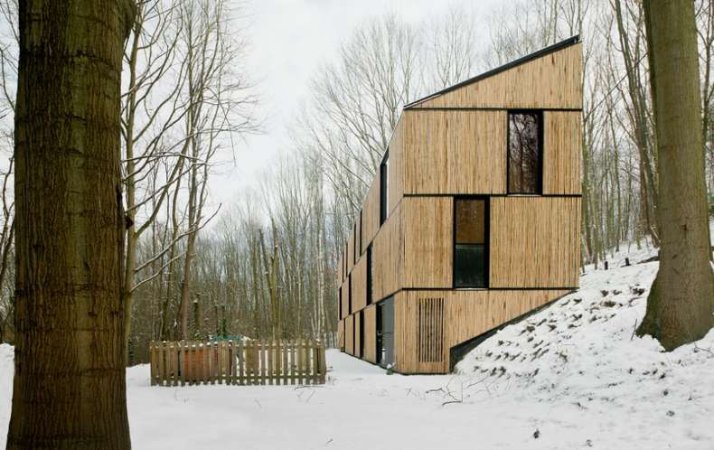 Effective Low Energy House of Ecological Bamboo Sticks