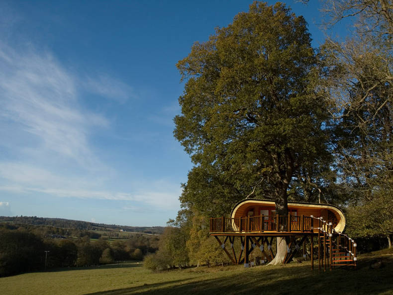 Tree House from the World's Leading Specialists: Blue Forest